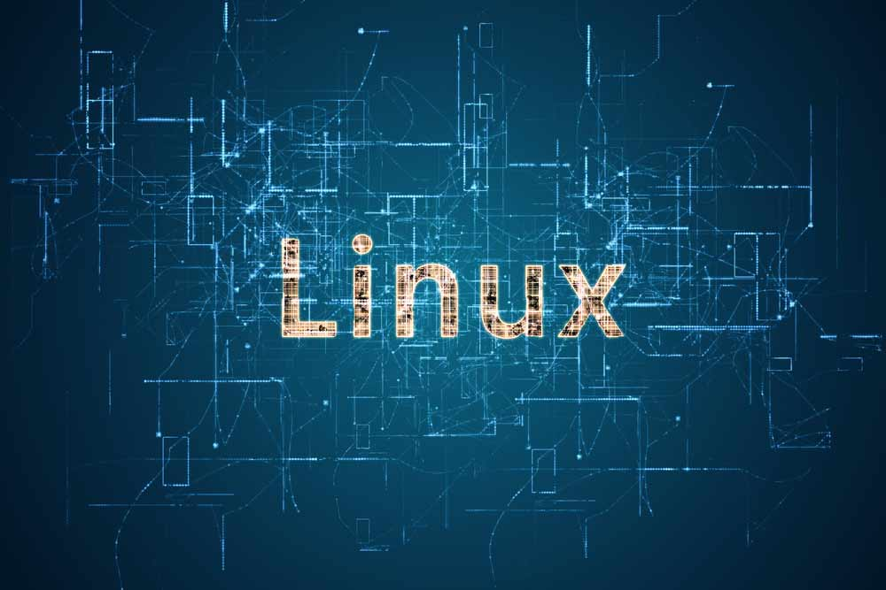 Linux is the go-to operating system for Hana. With Hana 2.0 on the horizon, Linux will cement the status-quo. [shutterstock: 634316555, jivacore]