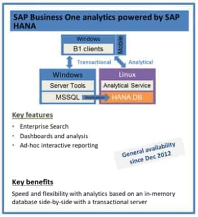 SAP Business One Analytics Powered By Hana