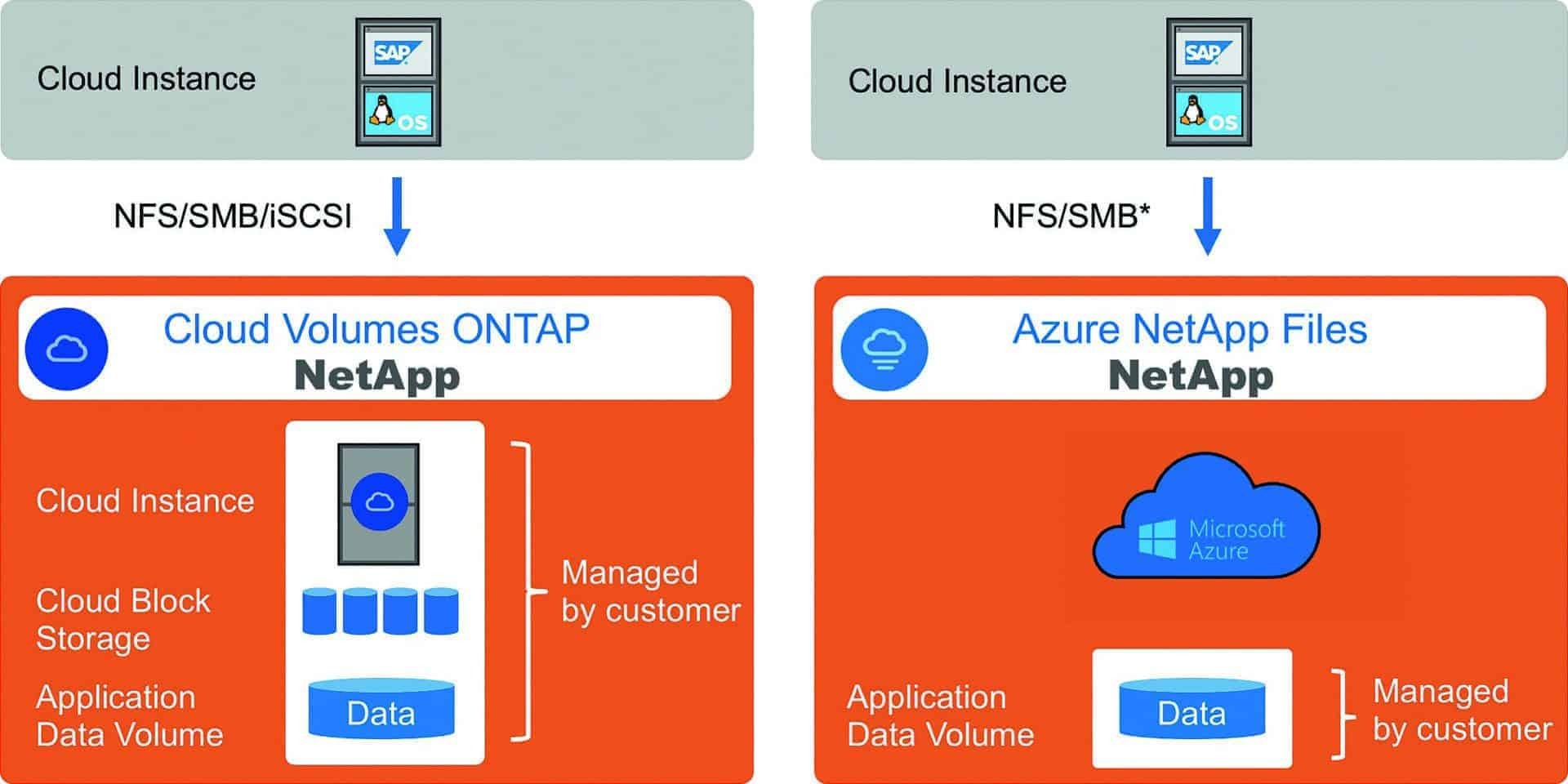 Fig. 1: Available on Microsoft Azure: Cloud Volumes Ontap and Azure NetApp Files.